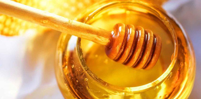 Fattoria didattica per insegnare ai bambini come vivono le api